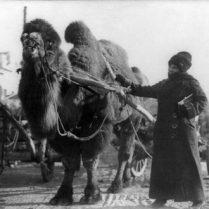 ماجراجوترین زنان تاریخ